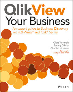 Bjork, Lars - QlikView Your Business: An Expert Guide to Business Discovery with QlikView and Qlik Sense, e-bok