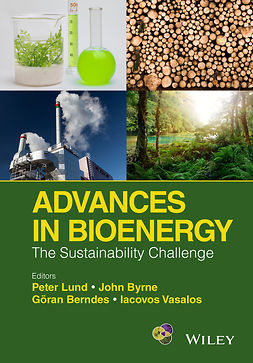 Berndes, Goeran - Advances in Bioenergy: The Sustainability Challenge, e-kirja