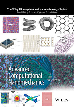 Silvestre, Nuno - Advanced Computational Nanomechanics, ebook