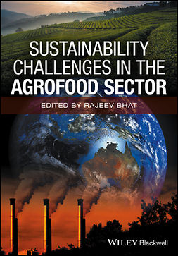 Bhat, Rajeev - Sustainability Challenges in the Agrofood Sector, e-kirja