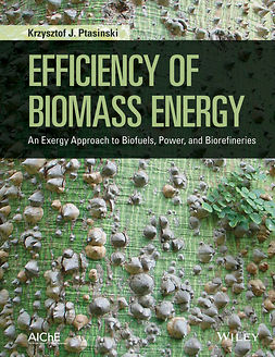 Ptasinski, Krzysztof J. - Efficiency of Biomass Energy: An Exergy Approach to Biofuels, Power, and Biorefineries, e-bok
