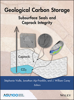 Ajo-Franklin, Jonathan - Geological Carbon Storage: Subsurface Seals and Caprock Integrity, e-kirja