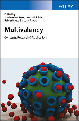 Haag, Rainer - Multivalency: Concepts, Research and Applications, ebook