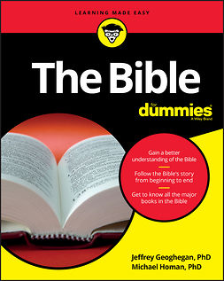Geoghegan, Jeffrey - The Bible For Dummies, ebook