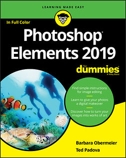 Obermeier, Barbara - Photoshop Elements 2019 For Dummies, e-bok