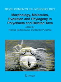 Bartolomaeus, T. - Morphology, Molecules, Evolution and Phylogeny in Polychaeta and Related Taxa, ebook