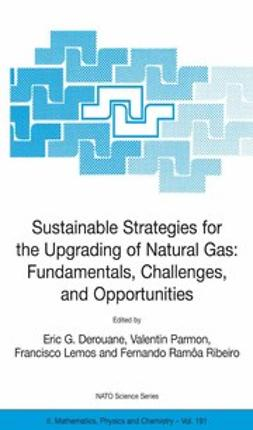 Derouane, Eric G. - Sustainable Strategies for the Upgrading of Natural Gas: Fundamentals, Challenges, and Opportunities, ebook