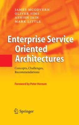 Jain, Ashish - Enterprise Service Oriented Architectures, ebook