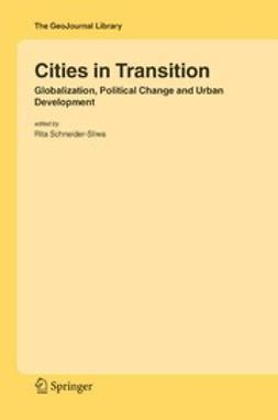 Schneider-Sliwa, Rita - Cities in Transition, e-kirja