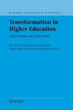 Cloete, Nico - Transformation in Higher Education, ebook