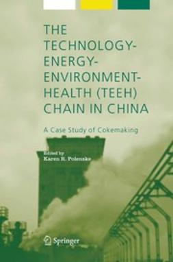 Polenske, Karen R. - The Technology-Energy-Environment-Health (TEEH) Chain in China, ebook
