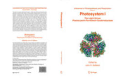 Golbeck, John H. - Photosystem I, ebook