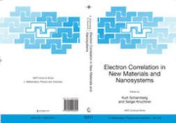 Kruchinin, Sergei - Electron Correlation in New Materials and Nanosystems, ebook
