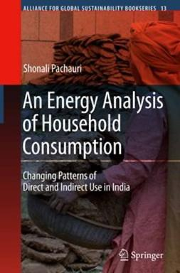 Pachauri, Shonali - An Energy Analysis of Household Consumption, ebook
