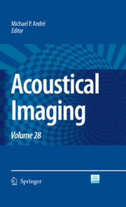 Akiyama, Iwaki - Acoustical Imaging, ebook
