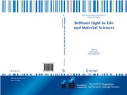 Tsakanov, Vasili - Brilliant Light in Life and Material Sciences, e-bok