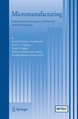 Bourell, David - Micromanufacturing, ebook