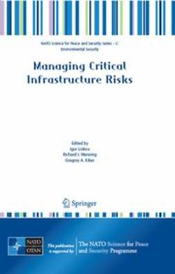 Kiker, Gregory A. - Managing Critical Infrastructure Risks, ebook