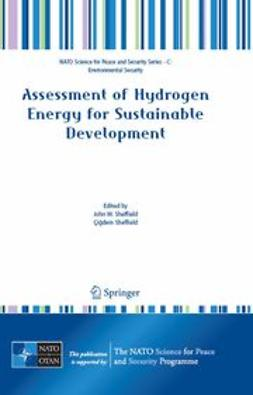 Sheffield, John W. - Assessment of Hydrogen Energy for Sustainable Development, ebook