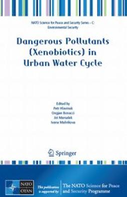Bonacci, Ongjen - Dangerous Pollutants (Xenobiotics) in Urban Water Cycle, e-bok
