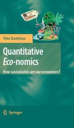 Bartelmus, Peter - Quantitative Eco–nomics, ebook