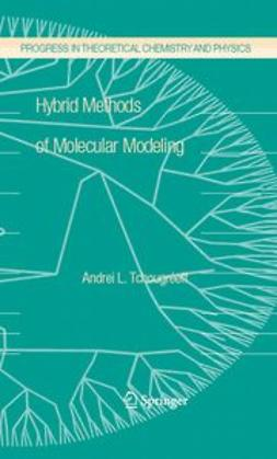 Tchougréeff, Andrei L. - Hybrid Methods of Molecular Modeling, ebook