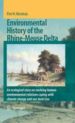 Nienhuis, Piet H. - Environmental History of the Rhine–Meuse Delta, ebook