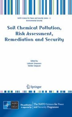 Sargsyan, Vardan - Soil Chemical Pollution, Risk Assessment, Remediation and Security, ebook