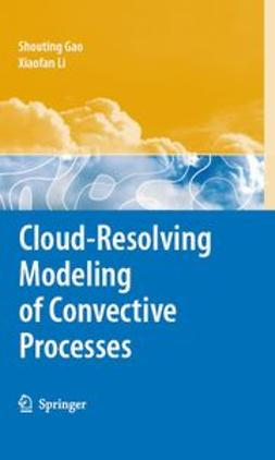 Gao, Shouting - Cloud-Resolving Modeling of Convective Processes, ebook