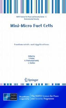 Kakaç, S. - Mini-Micro Fuel Cells, ebook