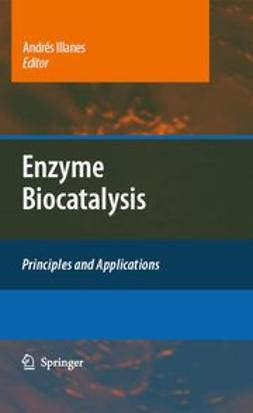 Illanes, Andrés - Enzyme Biocatalysis, ebook