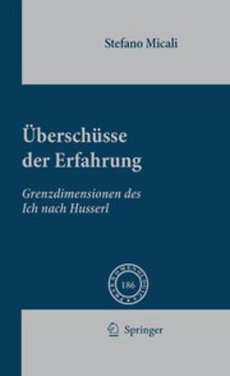Micali, Stefano - Überschüsse Der Erfahrung, ebook