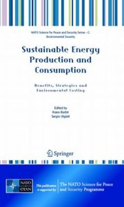 Barbir, Frano - Sustainable Energy Production and Consumption, ebook