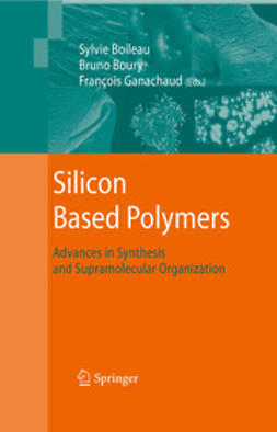 Boileau, Sylvie - Silicon Based Polymers, ebook