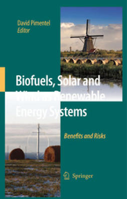 Pimentel, David - Biofuels, Solar and Wind as Renewable Energy Systems, ebook