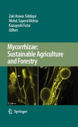 Akhtar, Mohd. Sayeed - Mycorrhizae: Sustainable Agriculture and Forestry, ebook
