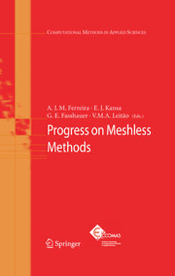 Fasshauer, G. E. - Progress on Meshless Methods, e-kirja