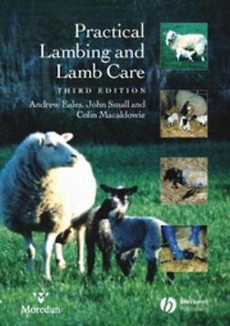 Eales, Andrew - Practical Lambing and Lamb Care: A Veterinary Guide, e-bok