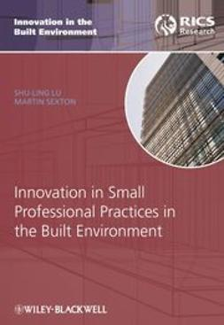 Lu, Shu-Ling - Innovation in Small Professional Practices in the Built Environment, ebook