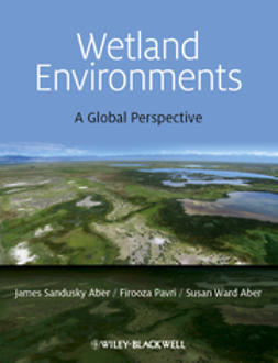 Aber, James S. - Wetland Environments: A Global Perspective, ebook
