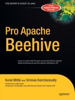 Kanchanavally, Srinivas - Pro Apache Beehive, ebook