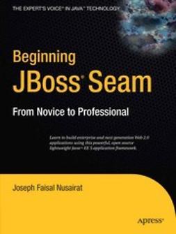 Nusairat, Joseph Faisal - Beginning JBoss® Seam, ebook