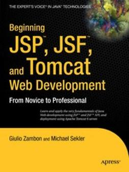 Sekler, Michael - Beginning JSP, JSF, and Tomcat Web Development, ebook