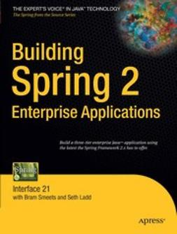 Ladd, Seth - Building Spring 2 Enterprise Applications, ebook