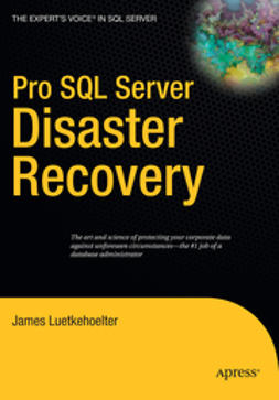 Luetkehoelter, James - Pro SQL Server Disaster Recovery, e-bok
