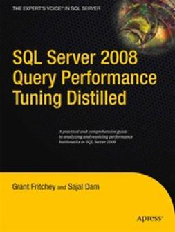 Fritchey, Grant - SQL Server 2008 Query Performance Tuning Distilled, e-kirja