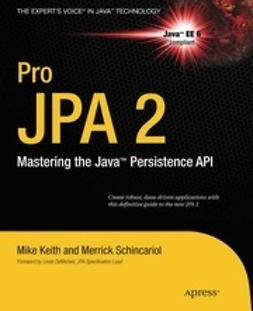 Keith, Mike - Pro JPA 2, ebook
