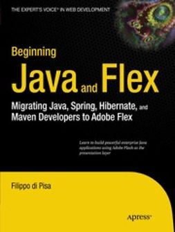 Pisa, Filippo - Beginning Java™ and Flex, ebook
