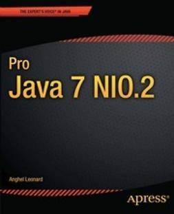 Leonard, Anghel - Pro Java 7 NIO.2, ebook