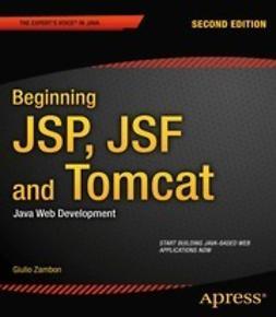 Zambon, Giulio - Beginning JSP, JSF and Tomcat, e-bok